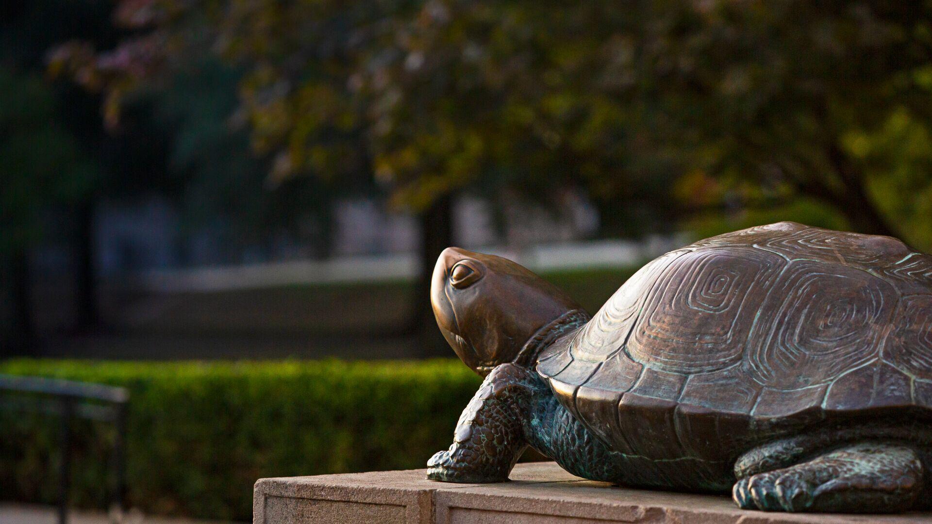 Testudo sculpture in front of McKeldin Library